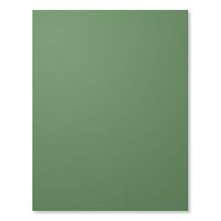 Garden Green 8-1/2X11 Card Stock
