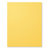 Daffodil Delight 8-1/2X11 Card Stock