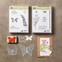 Butterfly Basics Wood Bundle