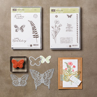 Butterfly Basics Clear Bundle