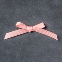 "Blushing Bride 3/8"" (1 Cm) Stitched Satin Ribbon"