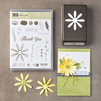 Daisy Delight Photopolymer Bundle